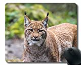 Alfombrilla de ratón Antideslizante, Leona bozal de Gato Grande 186056 Base de Goma Antideslizante Mousepad