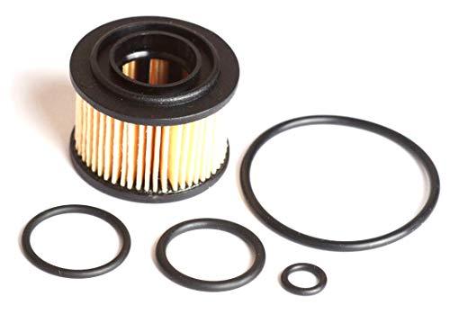 Filtereinsatz für BRC Gasfilter alte Version Typ 1 incl. Dichtungssatz LPG Autogas