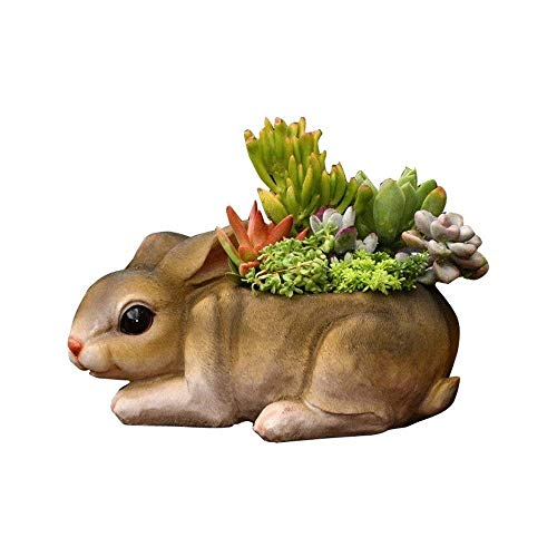JHSHENGSHI Creative Rabbit Succulents Flower with Drainage Hole, European Resin Cute Cartoon Animal Potted Planter Flowerpot Desktop Home Decoration Ornaments for Balcony Patio(Holiday Decoration)