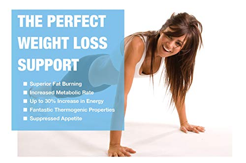 WBP Eph30+ - Advanced Energy Complex - Diet & Weight Loss Tablets (Flat Pack - 1000 Tablets)