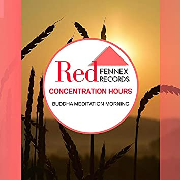 Concentration Hours - Buddha Meditation Morning