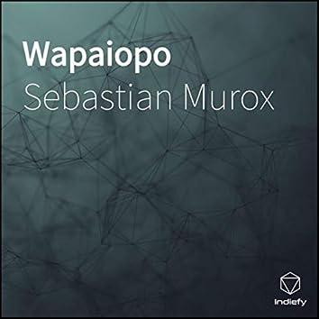 Wapaiopo