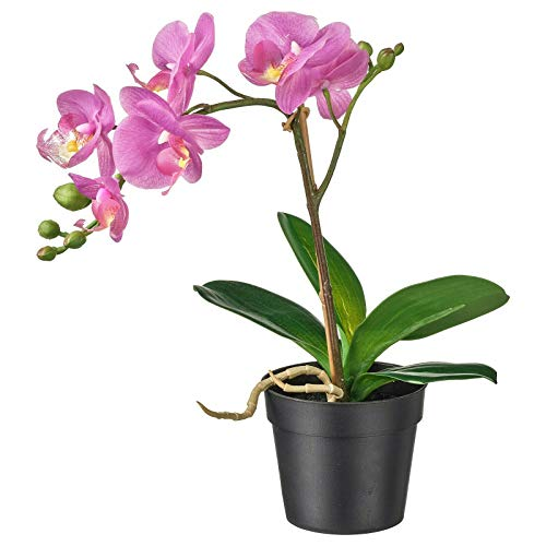 IKEA FEJKA - Planta artificial en maceta, para hermoso hogar, color lila orquídea, 9 cm
