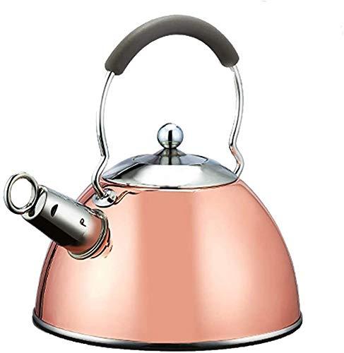 Bouilloire induction Bouilloire ménagère Sifflet 304 En acier inoxydable Kettle Cuisinière à gaz Induction Cuisson Général grande capacité WHLONG (Color : 2.5LCopper Plating)