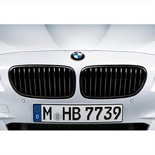 BMW 51712165528 M Performance Gloss Black Kidney Grille for F10 5 Series