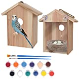 Nuts for Nature Outdoor Animal Products Window Bird House with Viewing Window and Paint Kit- DIY Wooden Birdhouse