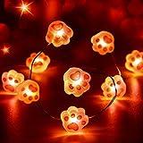 Guirnalda de Luces de Hada 10 Pies 40 LEDs Alimentado por Batería con 12 Modos Control Remoto y Temporizador para Boda Cumpleaños Fiesta Festival Casa Pared Jardín (Garra de Gato Rosa)