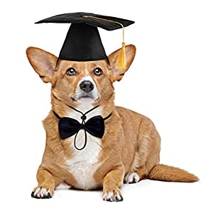 Dog Graduation Cap and Bowtie Collar Set,Pet Grad Costume