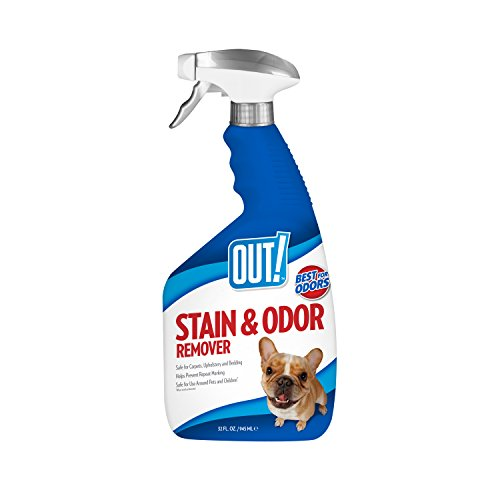 OUT! Pet Stain & Odor Remover, 32 oz, USA Made