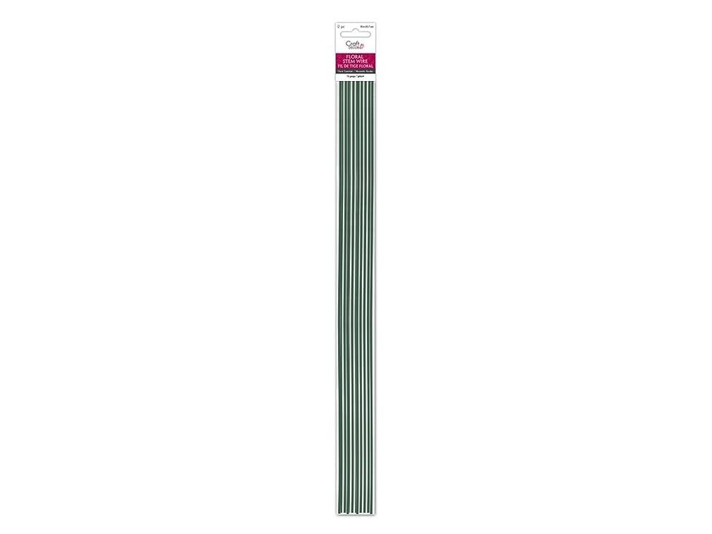 Craft Décor FL018 Floral Stem Wire 16g Green 18in, 12/pk