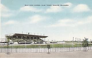 G4778 CO, Denver Mile High Kennel Club Track Postcard