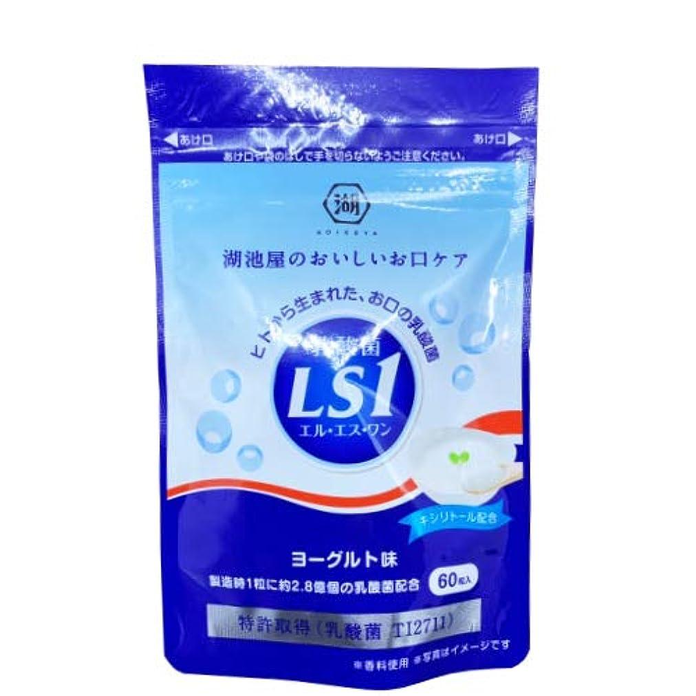 足枷研磨意義乳酸菌LS1 ヨーグルト味