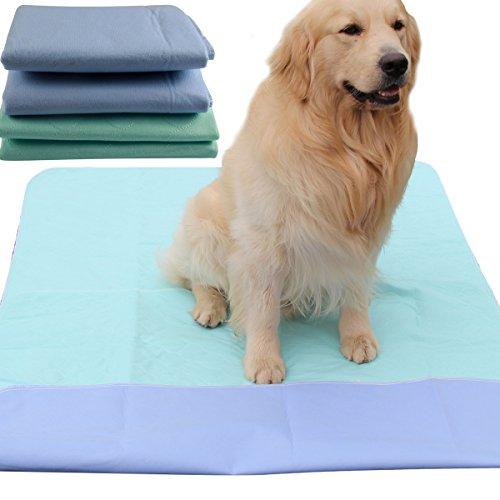 Lavabile Pet pee tappetino imbottito per cani (2pezzi), 91,4x 104,1cm impermeabile riutilizzabile Puppy training Travel Pad da Joydaog
