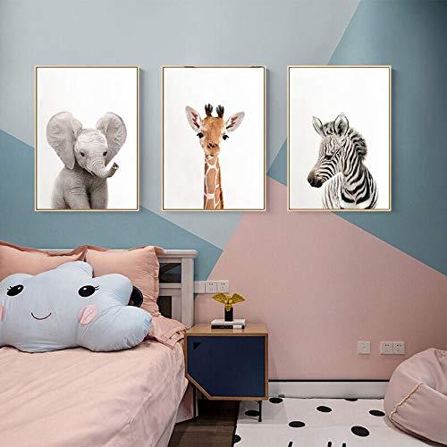 BBB&LIU Arte de Pared de Animales Tigre León Carteles e Impresiones Elefante Jirafa Lienzo Pintura para habitación de niños orangután Imagen de cebra-50x70cmx3 sin Marco