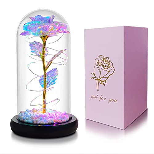 Gifts for Girlfriend,Galaxy Flower Rose,Beauty and The Beast Rose in Glass,Unique Gifts is for Girlfriend,Christmas, Anniversary,Valentine's Day