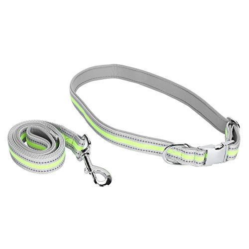 Collar de perro, tela de buceo ajustable reflectante Collares de tracción para perros Correas Hebilla de inserción de metal Cuerda de tracción para mascotas grabada(Conjunto L Verde Fluorescente)