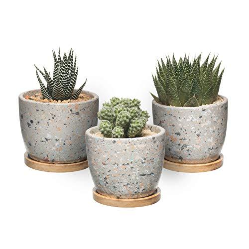 T4U Maceta de Cactus Suculenta de Cemento, Jardinera de Hormigón Maceta Contenedor Jardinera, Pequeña Olla de Barro Plantas Flores con Bandeja de Drenaje de Bambú Gris Conjunto de 3