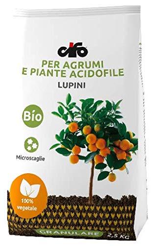 CIFO Lupini Dünger für Zitrus- und Acidophile Pflanzen