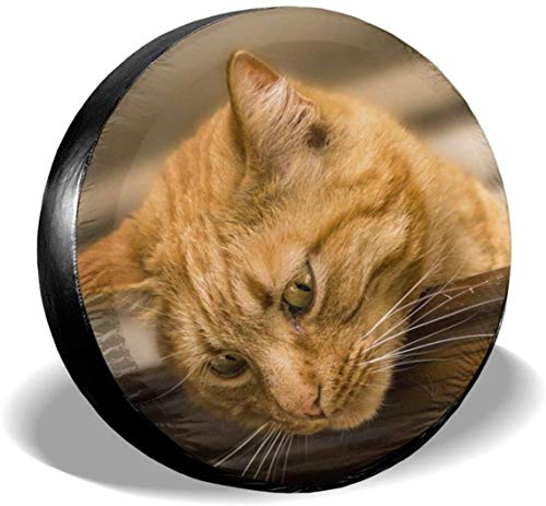 MODORSAN Cat Animals Cats Pets Cubierta de neumático de Rueda de Repuesto Poliéster Cubiertas de Rueda universales para Jeep Trailer RV SUV Accesorios de camión, 17 Pulgadas