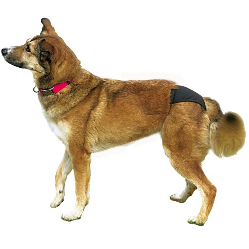 TRIXIE - Hundeschutzhöschen