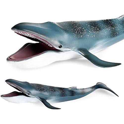 BUNRUN Figura de ballena azul juguete para niños suave realista Ocean Life Ballena figuras de acción modelo Sea Life Collection
