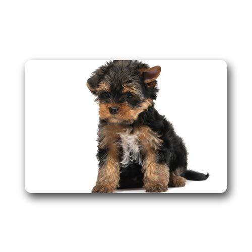 Trista Bauer Felpudo Yorkshire Terrier Felpudo para Perro Alfombrilla de Entrada Alfombrilla Alfombra 36x24 in