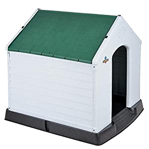 Confidence Pet XL Waterproof Plastic Dog Kennel Outdoor House Extra Large Green
