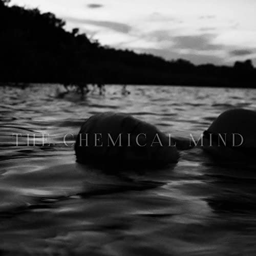 The Chemical Mind