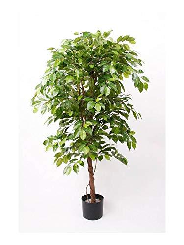 Artplants Set 2 x Ficus benjamina Artificial Bartolo, Tronco Real, Verde, 200cm - Ficus Decorativo/Planta sintética