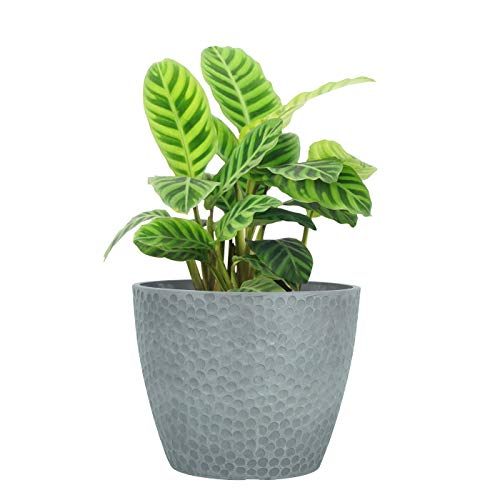 LA JOLIE MUSE 9.4 Inch Plant Pot For Indoor And Outdoor Plants, Modern Chic Planter With Honeycomb Pattern,Storm Gray