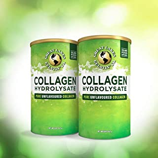 Great Lakes Gelatin Collagen Hydrolysate 454g (UK/EU