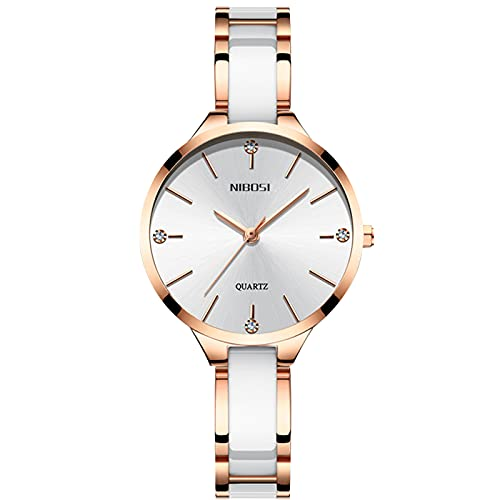 RORIOS Moda Relojes Mujer con Correa de Acero Inoxidable Relojes de Pulsera Impermeable Negocio Vestir Relojes para Mujer Chica