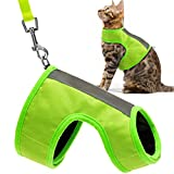 EXPAWLORER Reflective Cat Jacket Harness with Leash Set for Walking, Safety Soft Nylon Adjustable Vest for Pet Small Dogs Fluorescent Green Small