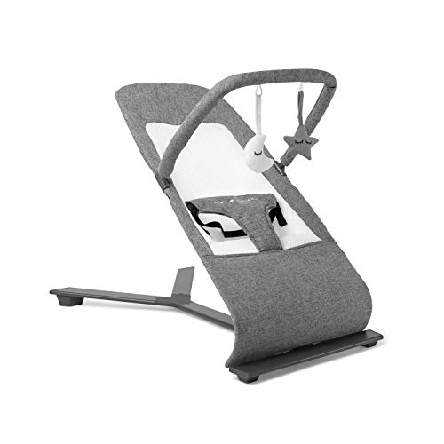 Baby Delight Go With Me Alpine Deluxe Portable Bouncer, Charcoal Tweed