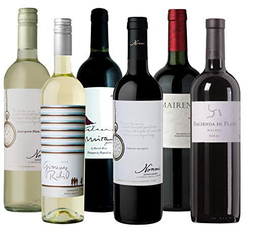 Atlantik Weine, Südamerika Weinpaket Argentinien mit Rotwein und Weißwein, Rebsorten Malbec Bonarda Cabernet Sauvignon Torrontés und Sauvignon Blanc aus Mendoza und Patagonien (6 x 0,75l)