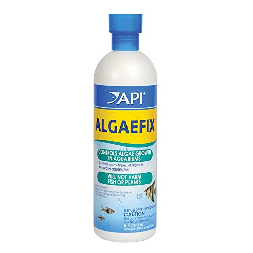 ALGAEFIX Algae Control Solution