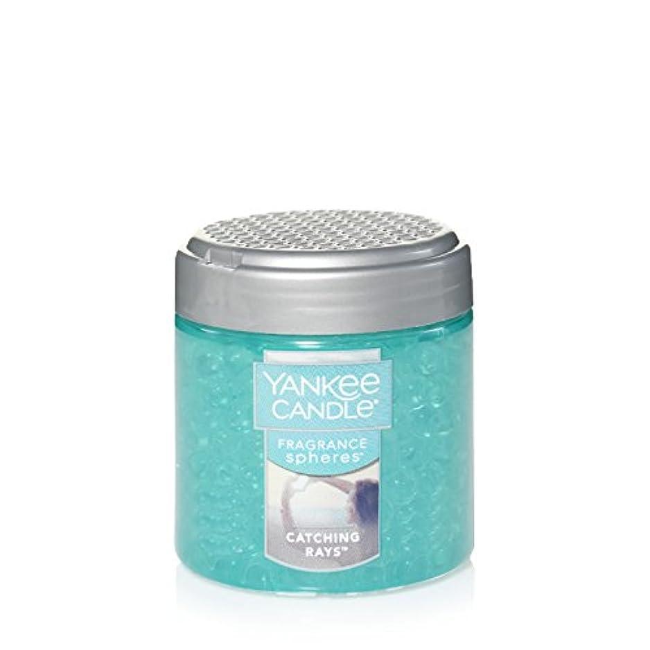 バーガー発行ビジター(ヤンキーキャンドル) Yankee Candle Lサイズ ジャーキャンドル Fragrance Spheres 1547233