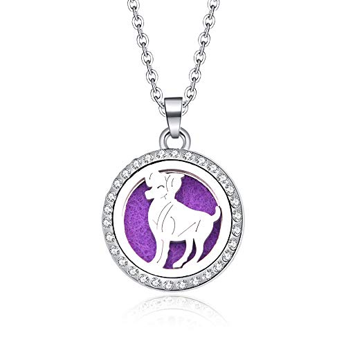Pendant Constellation,Aries 12 Zodiac Aroma Box Necklace Magnetic Stainless Steel Aromatherapy Essential Oil Diffuser Perfume Locket Pendant Jewelry Birthday Gift