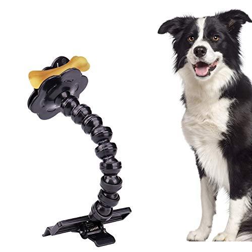 Hund Selfie Stick mit 2 Stück Tough Sounding Dog Chew Toy Bones, Mini | Kompakte tragbare Haustier Selfie Stick Rod, Welpe Fotografieren Fotografie Spielzeug für Hunde mit Blick auf die Kamera