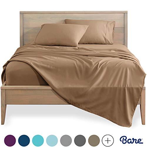 Bed Camel - 2
