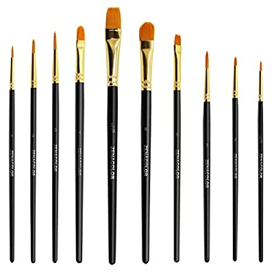 Set of 10 Unique Paint Brushes for Acrylic Oil and Watercolor Painting - Zenacolor - Acrylic Paint Brush Set, Watercolor and Oil Painting Set - Fine Detail Paint Brushes for Professional and Children