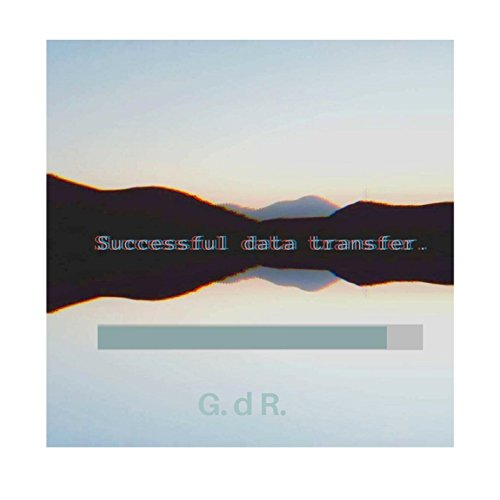 Successful Data Transfer (Desktop Version)