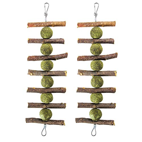 Toys for Rabbits,2 Pack Bunny Chew Toys for Teeth Grinding,Chinchilla Treats Natural Apple Branches Organic Bamboo Sticks Natural Apple Wood Branches for Rabbits Guinea Pigs Hamsters