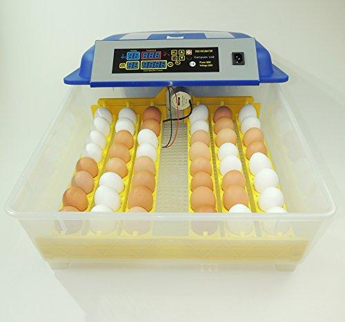 Campo24® V48 + 5 tlg. Zubehör Motorbrüter für bis zu 48 Eier/Inkubator/Vollautomatischer Motorbrüter/ Incubator - 3