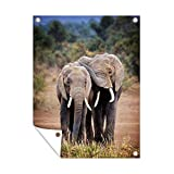Outdoor poster Tier Friendships - Elefanten in Kenia 60x80