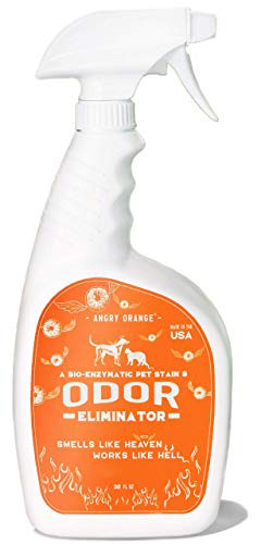 ANGRY ORANGE Enzyme Stain Cleaner & Pet Odor Eliminator, Dog & Cat Urine Destroyer for Floors & Carpet, 32oz (Fresh Citrus Scent)