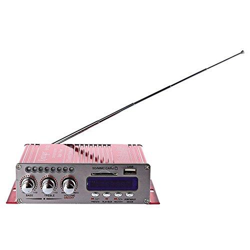DollaTek Amplificadores