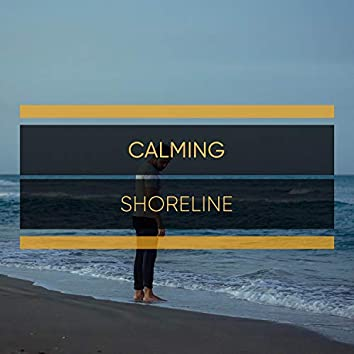 Calming Shoreline Compilation