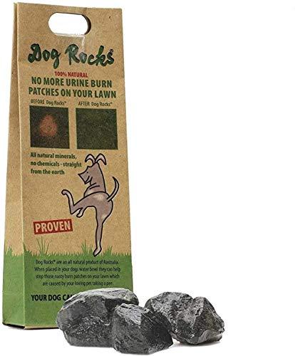 Dog Rocks Urine Patch Preventer 100g Bag