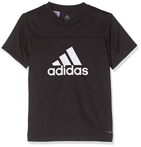 adidas Jungen YB TR EQ Tee T-Shirt, Black/White, 1516